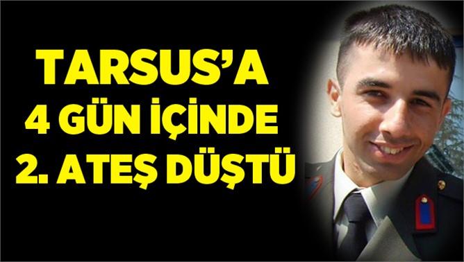 Nusaybin'den Tarsus'a Kara Haber