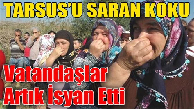 Tarsus'u Saran Pis Kokuya Artık Vatandaşlar İsyan Ediyor