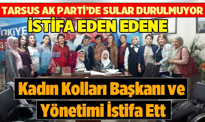 AK Parti Tarsus Kadın Kolları Başkanı ve Yönetimi İstifa Etti
