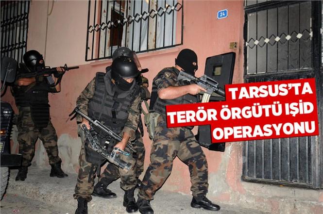 Tarsus'ta IŞİD'e Şafak Baskını