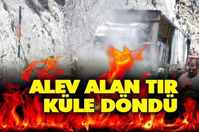 Mersin Tarsus-Pozantı Tem Otoyolu Gülek Tüneli Mevkisi Çay Yüklü TIR Yandı