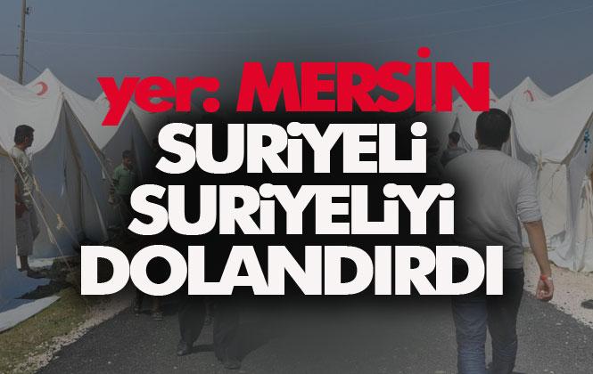 Mersin Tarsus'ta Suriyeli Yine Suriyeliyi Dolandırdı