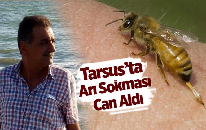 Arının Soktuğu Şahıs Hayatını Kaybetti