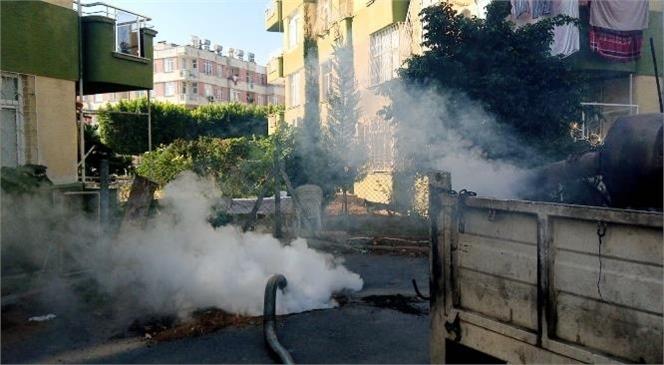 Mersin Büyükşehir Belediyesi, Sinek ve Diğer Zararlılarla Mücadele Çalışmalarına Durmaksızın Devam Ediyor