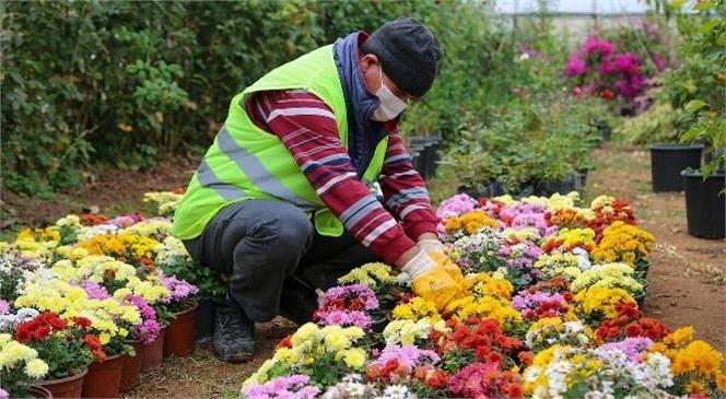 """""""Yılda 20 Bin Bitki Üretiliyor, Erdemli Güzelleşiyor"""""""