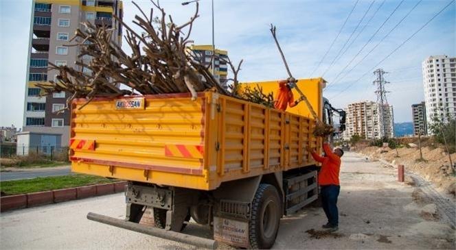 Çalışmaların Yoğunlaştığı Caddedeki Ağaçlar da Korunuyor